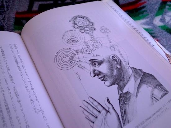 多義から一義へ:絵から図が分裂した17世紀: DESIGN IT! w/LOVE