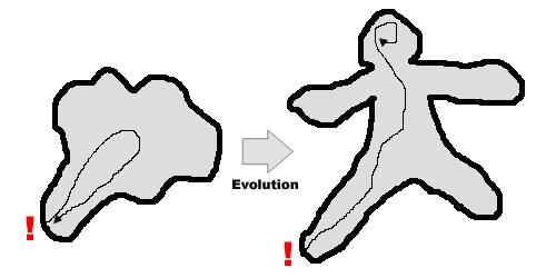 感覚の進化